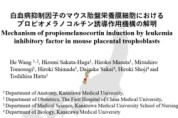 【O-16】白血病抑制因子のマウス胎盤栄養膜細胞におけるプロピオメラノコルチン誘導作用機構の解明