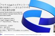 【O-1】アセチルCoAカルボキシラーゼ阻害薬の妊娠ラットまたはウサギを用いた発生毒性試験